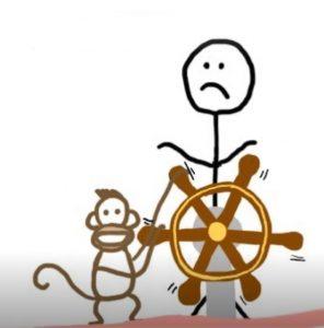 aapje aan het roer